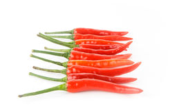 Chilli peper on white background Royalty Free Stock Image