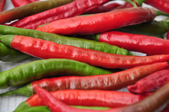 Chilli pepers. Red and green chili peppers stock images