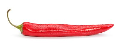 Chilli pepper Stock Images