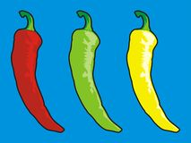 Chilli pepper Royalty Free Stock Image