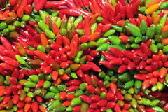 Chilli pepper abstract Royalty Free Stock Photos