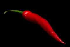 Chilli pepper on black Royalty Free Stock Images