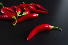 Chilli pepper on black background. Stock Image