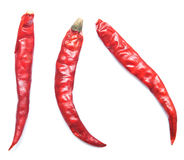 Chilli pepper Royalty Free Stock Images