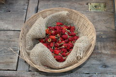 Chilli pepper. Drying chilli peppers collection, hottest pepper chilli Stock Image