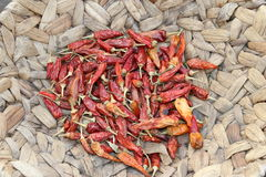 Chilli pepper. Drying chilli peppers collection, hottest pepper chilli Stock Photo