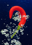 Chilli pepper falling in water with air bubbles Royalty Free Stock Photos