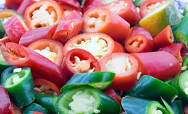 Chilli pepper. Royalty Free Stock Images