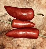 Chilli pepper. Hot chilli pepper royalty free stock photography