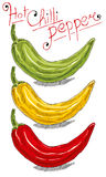 Chilli pepper. Hot chilli pepper vector set on white background. Red, yellow and green royalty free illustration
