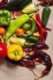 Chilli Pepper Still Life Royalty Free Stock Image