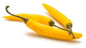 Chilli Pepper. Three yellow Chili pepper isolated on white backgroundn stock images