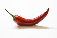 Chilli pepper Stock Image