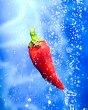 Chilli pepper in a water splash. Chilli pepper  dropping ina splash of water drops Royalty Free Stock Photos