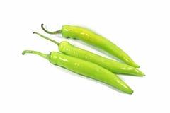 Fresh Chilli Pepper. Chilli Pepper on white background stock images