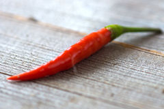 Chilli pepper Stock Photography