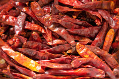 Chilli peppers. Close up on dried chilli peppers stock photos