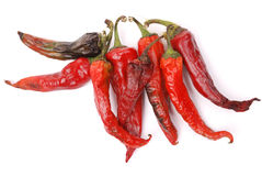 Chilli peppers. Stock Photography