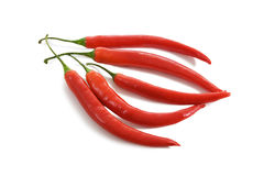 Chilli peppers. Five red hot chilli peppers Stock Image