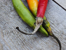 Chilli peppers. Autumn background Royalty Free Stock Images