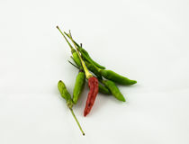 Chilli peppers. An food asia royalty free stock photography