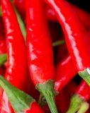Chilli Peppers Indicates Spice Capsaicin And Chilies Royalty Free Stock Photography
