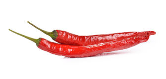 Chilli peppers isolated on white background Stock Image