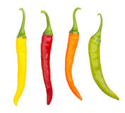 Chilli peppers Stock Images