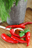 Chilli peppers and paprika  Royalty Free Stock Image