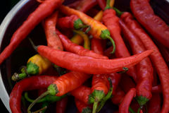 Chilli peppers. Red hot chilli peppers on market Stock Photo