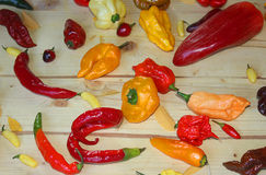 Chilli peppers types on the table. Types of chili peppers on the table Stock Image