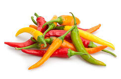 Chilli peppers. On white background royalty free stock photography