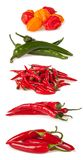 Chilli peppers on white background Royalty Free Stock Photography
