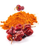 Chilli powder. With red chillies royalty free stock photos