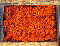 Chilli powder Stock Image