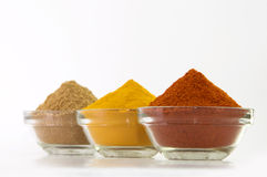Chilli Powder, Turmeric Powder & Coriander powder in Bowl Stock Images