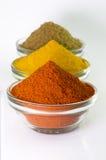 Chilli Powder, Turmeric Powder & Coriander powder in Bowl Royalty Free Stock Photos