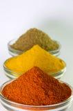 Chilli Powder, Turmeric Powder & Coriander powder in Bowl Royalty Free Stock Image
