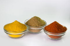 Chilli Powder, Turmeric Powder & Coriander powder in Bowl Stock Images
