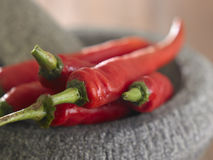 Chilli Royalty Free Stock Image