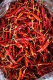 Chilli. Spices - dried red hot chilli chillies pepper in  plastic bag Stock Photo