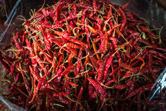 Chilli. Spices - dried red hot chilli chillies pepper with vignette Stock Photo