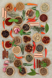 Chilli Spices and Herbs Royalty Free Stock Photos