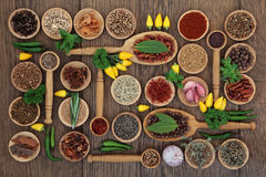 Chilli Spices and Herbs Royalty Free Stock Photo