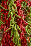Chilli pepers. Chilli, Sunny in the Boqueria market Barcelona Spain, Selective focus stock photos