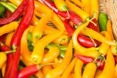 chillies świeże Zdjęcie Royalty Free