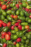 Chillies Stock Photography