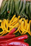 Chillies. Green, yellow and red chillies beside eath other stock image