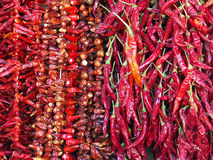 chillies Royalty-vrije Stock Foto