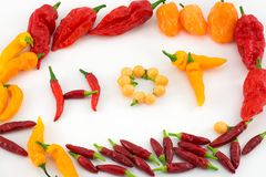 chillies Obraz Royalty Free